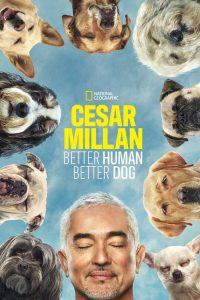 Cesar Millan: Better Human, Better Dog: Season 1